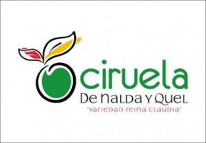 logo_ciruela_cambiado